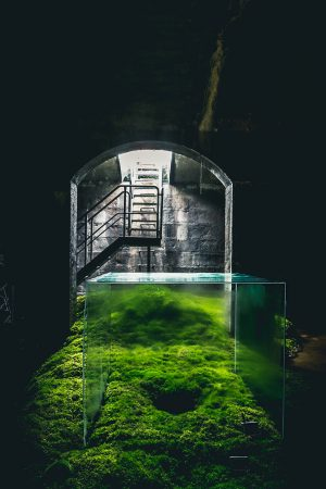 Hiroshi Sambuichi: the Water