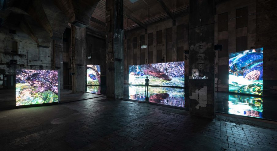 Jakob Kudsk Steensen, Berl-Berl, 2021. Livesimulation. Installation view: Halle am Berghain, Berlin, 2021. Foto: Tim Ohler.